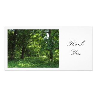 Spring in the Woods 01 - Thank You Card