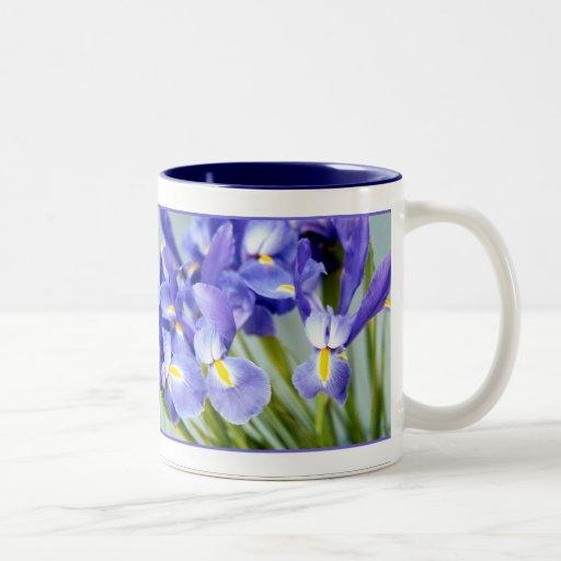Spring Iris Mug