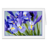 Spring Iris Photo Greeting Card