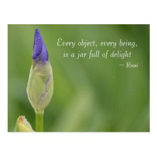 spring iris postcard
