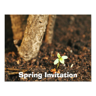 "Spring is coming 4.25"" x 5.5"" invitation card"