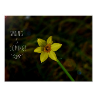 Spring is coming! poster