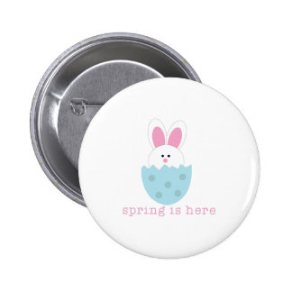 Spring Is Here Pins