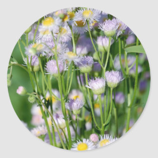 Spring is in the air classic round sticker