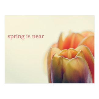 Spring is near postcard