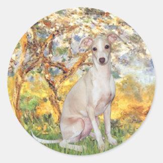 Spring - Italian Greyhound 5 Classic Round Sticker