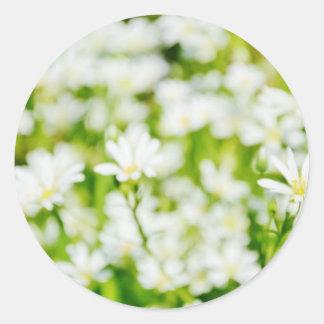 Spring IV Classic Round Sticker