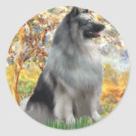 Spring - Keeshond Stickers