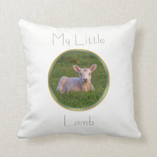 Spring lamb cushion