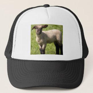 Spring lamb trucker hat