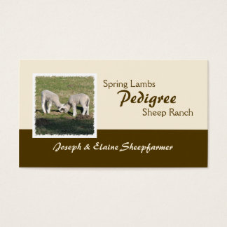 Spring lambs business card