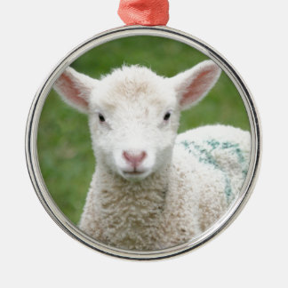 Spring Lambs Silver-Colored Round Decoration