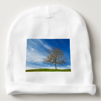 Spring Landscapes Baby Beanie