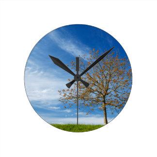 Spring Landscapes Round Clock