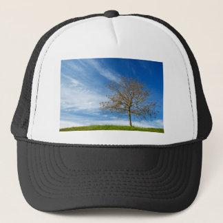Spring Landscapes Trucker Hat