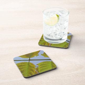Spring Leaf Coasters