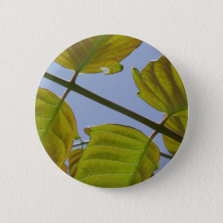 Spring Leaves Button
