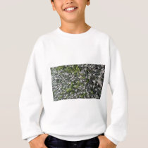 spring leaves of bushes in the park nature pattern sweatshirt
