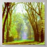 Spring Light Poster
