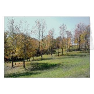 Spring-Like Trees 2004 Photo. Card