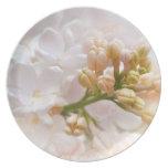 Spring Lilacs Dinner Plate