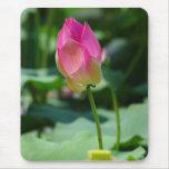 Spring Lotus Mouse Pad