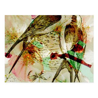 SPRING LOVE SWALLOWS2.jpg Postcard