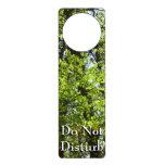 Spring Maple Leaves Green Nature Door Hanger