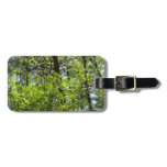 Spring Maple Leaves Green Nature Luggage Tag