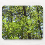 Spring Maple Leaves Green Nature Mouse Pad