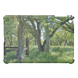 Spring Meadow,  Cover For The iPad Mini