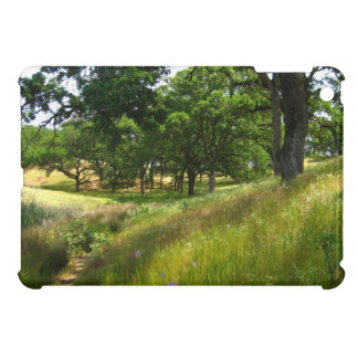 Spring Meadow, Case For The iPad Mini