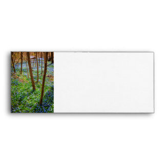 Spring meadow with blue flowers glory-of-the-snow envelope