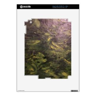 Spring Meadows iPad 2 Decal