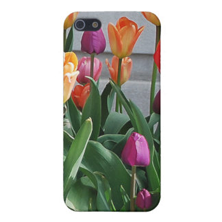 Spring Means Tulips iPhone SE/5/5s Case