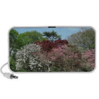 Spring Melody Mini Speaker