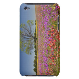 Spring mesquite trees growing in wildflowers iPod touch case