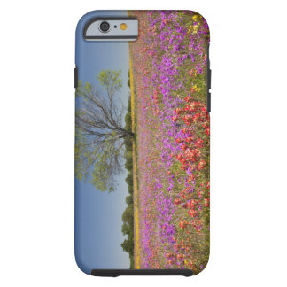 Spring mesquite trees growing in wildflowers, tough iPhone 6 case