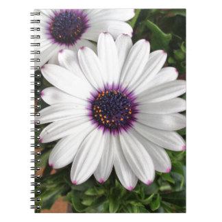 Spring messenger notebook