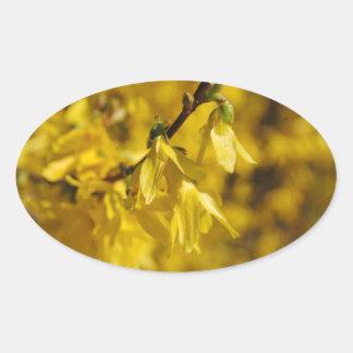 Spring messenger oval sticker