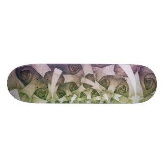 Spring morning skateboard