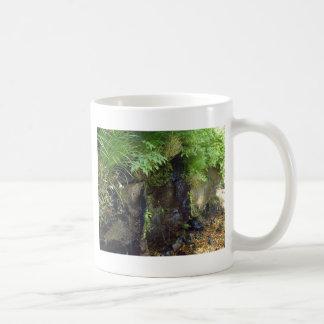 spring, moss and bedrock (2) coffee mugs
