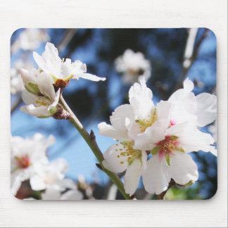 Spring mousepad