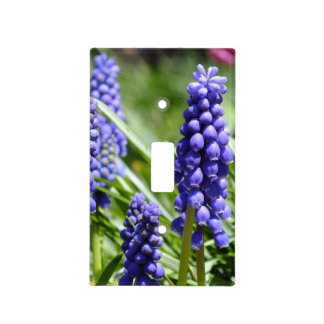 Spring Muscari Light Switch Cover