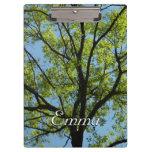 Spring Oak Tree Green Nature Scene Clipboard