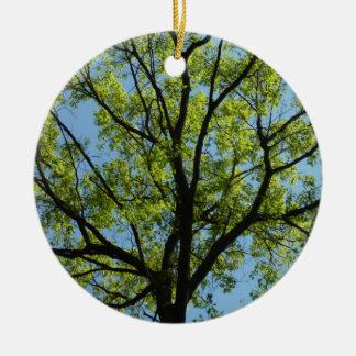 Spring Oak Tree Ornament