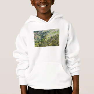 Spring On Cadillac Mountain Acadia National Park Hoodie