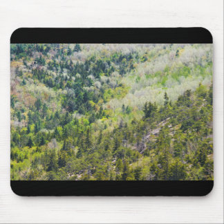 Spring On Cadillac Mountain Acadia National Park Mouse Pad