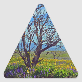 Spring On High Prairie Triangle Stickers