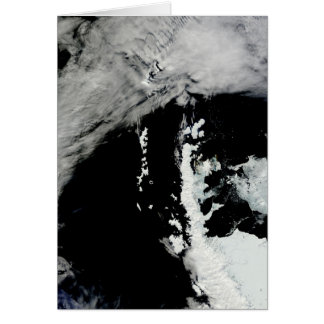 Spring on the Antarctic Peninsula Note Card